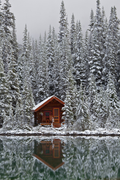 Rustic_Cabin_of_Lake_O'Hara_Lodge_in_Snow